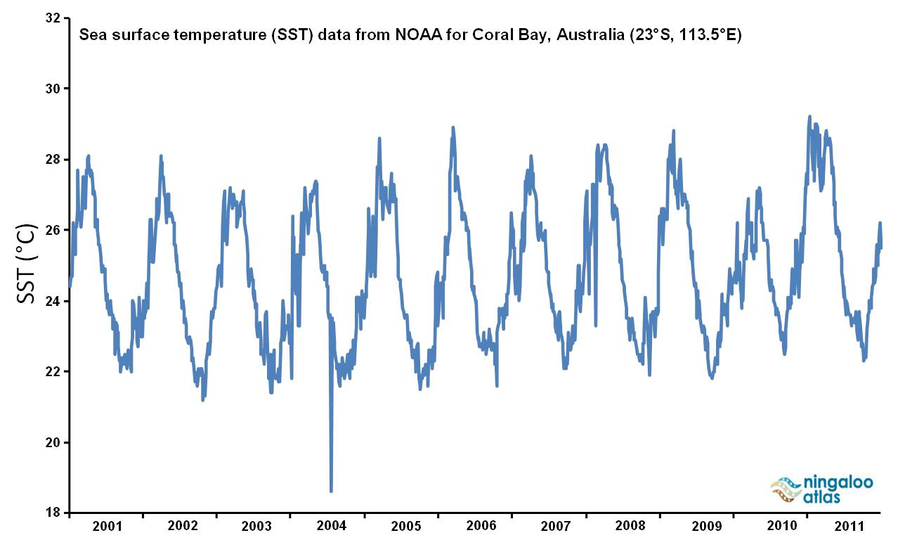 Coral Bay sea surface temperatures